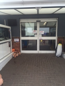 Automatic door upgrade to Aquatics Centre in Southend-On-Sea Essex